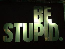 Be stupid @ Amsterdam