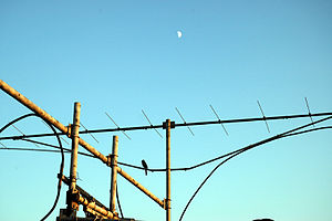 A part of 144 MHz EME antenna array at WA6PY i...