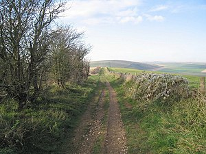 English: Downland Footpath Footpath, part of L...