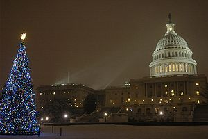 Christmas tree of the United States Capitol sh...