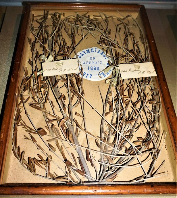 Olive Branch Wreath Awarded to Australia's first Olympic Medallist - - www.joyofmuseums.com - National Sports Museum