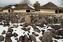 イノシシ - Wikipedia