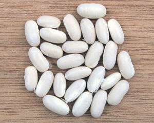 English: Phaseolus vulgaris, white beans Neder...