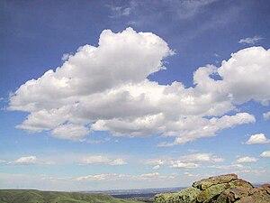 2010 Northern Hemisphere summer heat wave