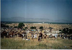 "English: The ""Pushkar Camel and cattle Fa..."