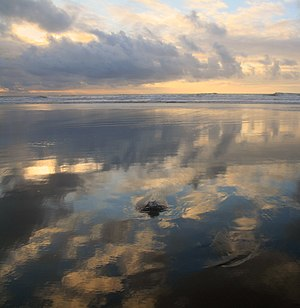 English: Negative low tide at Ocean Beach in S...