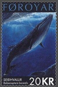 Gambar paus Sei pada perangko kepulauan Faroe yang dikeluarkan pada tanggal 17 September 2001