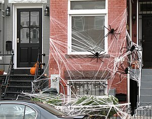"""Spider infestation"" at a row house ..."