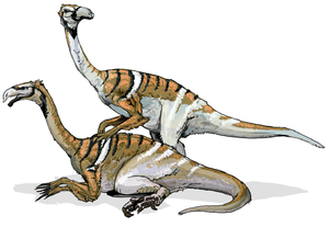 Nanshiungosaurus is a genus of coelurosaurian ...