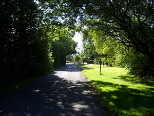 English: Paythorne A summery view of the lane ...