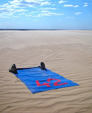 A blue towel featuring a large red 42 (the ans...