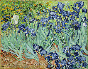 https://i1.wp.com/upload.wikimedia.org/wikipedia/commons/thumb/9/98/VanGoghIrises2.jpg/300px-VanGoghIrises2.jpg