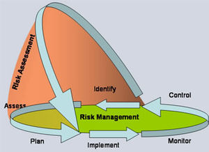 Risk management sub processes