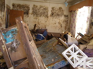 Interior of home in the Gentilly section of Ne...