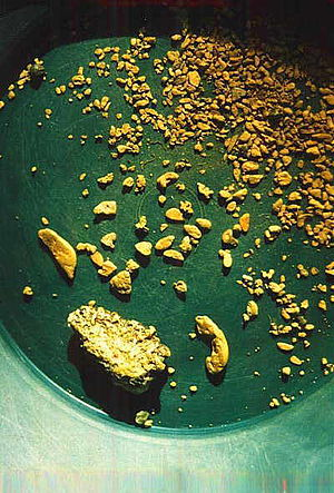 English: Some gold nuggets from Alaska.
