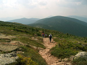 English: The Appalachian Trail in the southern...