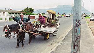 Cape Flats scrap collectors
