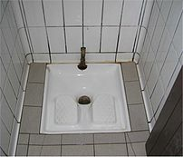 """French """"Squatter"""" toilet"""