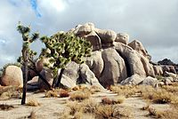 Joshua Tree - Formación rocosa en Real Hidden Valley 1.jpg