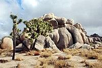 Joshua Tree - Formazione rocciosa nella Real Hidden Valley 1.jpg