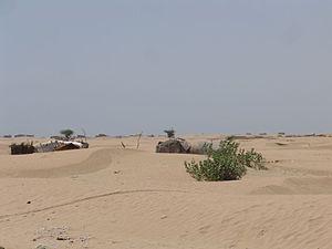 Wilderness - Gwadar