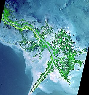 Mississippi River Delta from space. This image...