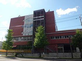 280px Sapporo Odori High School - 新田のんのはパラクロスカントリー選手!プロフィールと学校情報や彼氏は?
