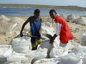 Sea-salt-minemaio