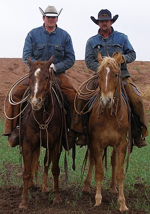 Modern working cowboys wearing cowboy hats