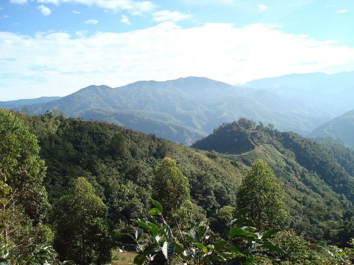 Forest-hills-tarrazu-near-quepos-coast
