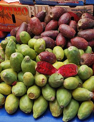 "English: Red and green ""tunas"" (pric..."