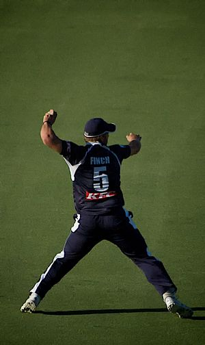 Aaron Finch at KFC Twenty20 BigBash - WA v VIC...