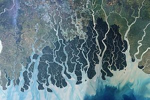 The Sunderbans, at the mouth of river Ganges s...