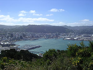 A photo of Wellington taken from the lookout p...