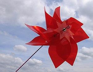 Wiatraczek czerwony