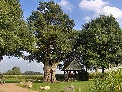Kroezenboom, Tubbergen