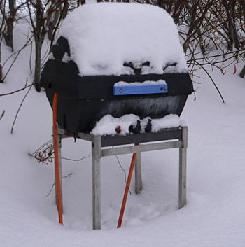 A propane gas grill in the snow in Iceland.
