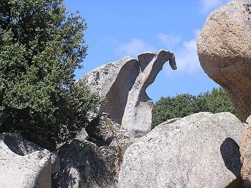 Filitosa dinosaurus