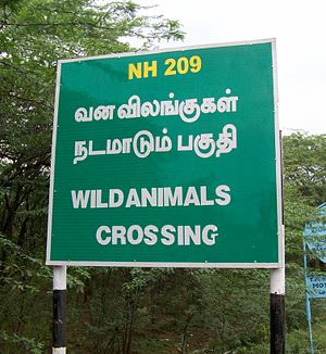 Wild Animals Warning sign on National Highwaya