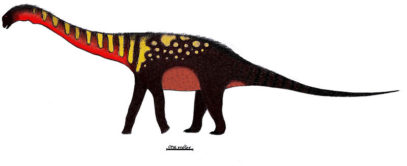 File:Quetecsaurus.jpg