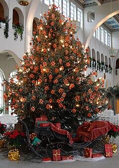 Weihnachtsbaum-Bad Kissingen