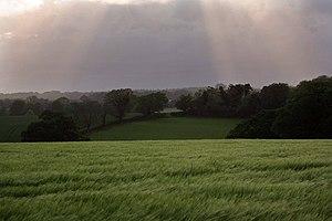 English: Rain storm at Upward Estate