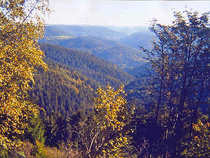 on the Teisenkopf mountain, Black Forest