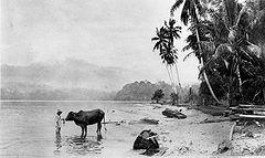 Danau Ranau - Danau Ranau (Agustus 1926)