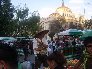 Joven chino-mexicano en la Alameda Central