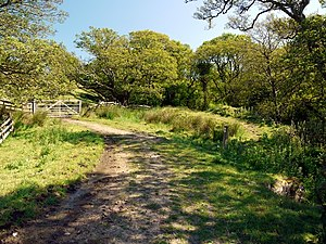 English: Path junction at Cow Ford One path fo...