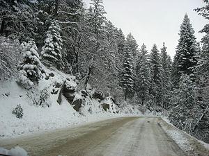 Snow fall in Bass Lake, California.