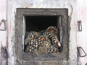 "A distillery oven loaded with agave ""piña..."