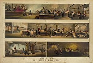 Pork packing in Cincinnati. Print showing four...
