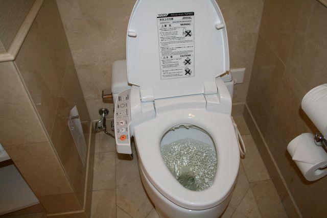 penyebab wc mampet dan apa solusi nya